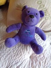 2002 PARAMOUNTS CAROWINDS AMUSEMENT PARK ADVERTISEMENT PURPLE TEDDY BEAR PLUSH