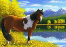 Paint pinto horse autumn fall lake aspen mountains limited edition aceo print