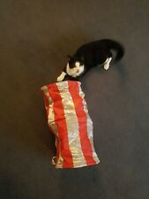 Interactive cat toy, tunnel, rattly, kittens