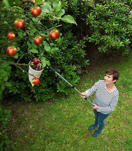 WENKO Obstsammler XL mit Teleskopstiel Obstpflücker mit Teleskopstiel