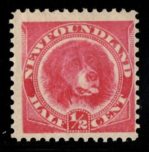 #56 Newfoundland Canada mint