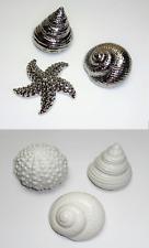 3er Set Deko Muscheln Seestern Seeigel silber weiß maritime Dekoration