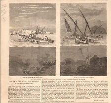 Fishing Sponges Syria / Corail coral Sicily Louis Figuier GRAVURE OLD PRINT 1865