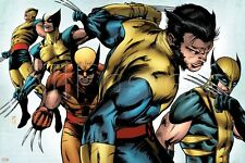 Marvel X-Men Evolutions No.1: Wolverine Poster - 24x36