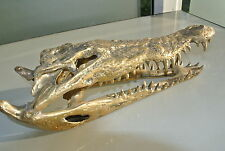 used Crocodile skull solid brass large heavy decoration stunning hand made 36 cm