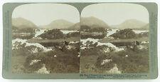 Underwood & Underwood Stereoview of Islands & Upper Lake Killarney, Ireland 1901