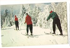 ON THE SKI TRAIL Skiing Winter Sports Snow  New Hampshire NH Postcard