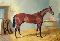 ZWPT686 strong animal horse in Stable 100%  hand painted art oil painting canvas