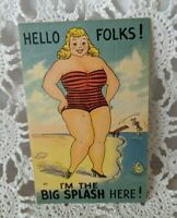 Post Card Vintage Comical Humor Funny UnPosted Hello Folks