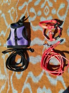 2 x Ferret Harness and lead sets by 'Living World' *AS NEW* tiny puppy kitten