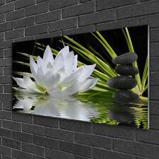 Wandbilder 100x50 Glasbild Druck auf Glas Blume Steine Wasser Pflanzen