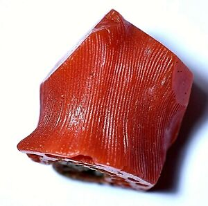 Untreated Natural Red Coral 27.15 Ct Italian Certified Cube Facet Raw Gemstone