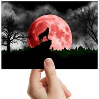 "Howling Blood Moon Wolves - Small Photograph 6"" x 4"" Art Print Photo Gift #8850"