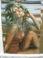 FARRAH FACET VINTAGE POSTER BAR GARAGE MAN CAVE HOT GIRL 1976 CNG1049