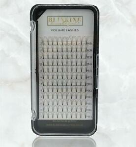 Premade Russian Volume 4D Lashes Pre Fan Blinking Beautiful Eyelash Extensions