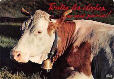 BT9265 toutes les cloches ne sont pas ici vow vache france   animal animaux