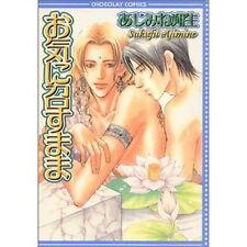 OKI Ni Mesu Mama Yaoi Manga japanisch/sakufu ajimine