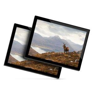 2 x Glass Placemats 20x25 cm - Wild Stag Loch Torridon Scotland  #16059