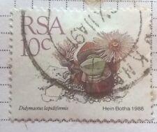 South Africa stamps - Didymaotus Lapidiformis - 10c 1988