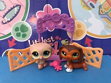 Authentic Littlest Pet Shop LPS #675 SAVANNAH Dachshund Dog