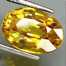 Unheated Gem Yellow Sapphire Oval Shape AAA Natural Loose Gemstone 10 x 14mm New