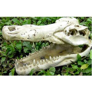 Reptile Terrarium Ornament Lizard Snake Cave Crocodile Skull   Tank Decor