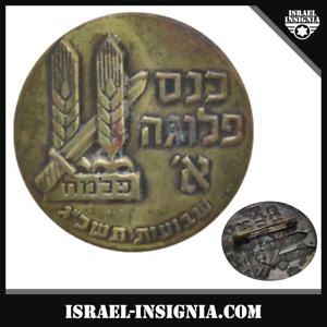 ISRAEL PALESTINE HAGANA PALMACH VETERAN CONVENTION 1962 PIN BADGE INSIGNIA