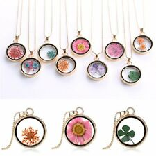 9 Styles Natural Real Dried Flower Round Glass Resin Pendant Necklace Chain New