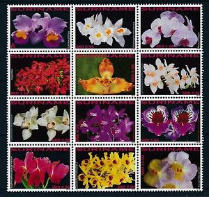 [SU1729] Suriname Surinam 2010 Flora Flowers Orchids MNH