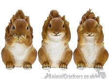 Garden Pals SET 3 WISE SQUIRRELS ornament figurine sculpture Squirrel lover gift