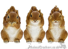 More details for garden pals set 3 wise squirrels ornament figurine sculpture squirrel lover gift
