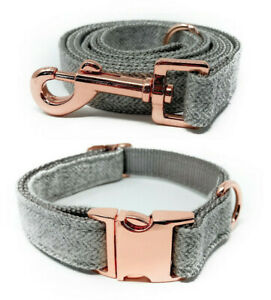 Cute Gray & Rose Gold Heavy Duty Nylon Adjustable Dog Collars and Leashes