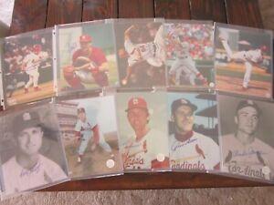 Lot of 10 Autograph 8X10 Photos ST LOUIS Cardinals SIGNATURES Zeile Drew More
