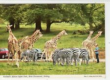 BLAIR DRUMMOND SAFARI PARK, STIRLING: Stirlingshire postcard (C5140).