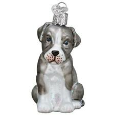 Old World Christmas Pitbull Pup (12570)N Glass Ornament w/ Owc Box