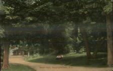 Wappingers Falls NY Mesier Park c1910 Postcard