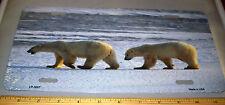 Alaska Polar Bear photograph on a Novelty Metal License Plate, made in the USA