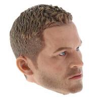 """1/6 Scale Male Figure Head Sculpt Paul for 12"""" Action Figure   DML"""