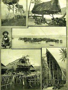 SUPUSELIA OIARRI NEW GUINEA LIFE 1890 Art Print Matted