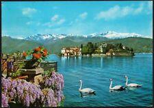 AD4661 Isola Bella (VB) - Panorama - Cartolina postale - Postcard
