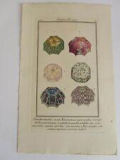 Journal Dames Modes n°4, pl. 9 (anonyme)   01/07/1912  pochoir