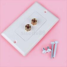 Budget 1 Speaker Cable Wall Plate Gold 2 Banana Plug for Audio Video w/ Screws