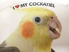 ON SALE! Cockatiel Parrot Exotic Bird Vinyl Decal Bumper Sticker
