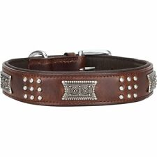 Knuffelwuff Echtleder Hundehalsband Sheridan 55-65cm 3 4cm