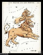 LEO July August Constellation ZODIAC Star Chart ASTRONOMY Astrology Poster Print
