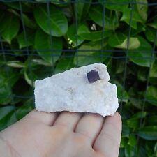 Minerali °°° CRISTALLO di FLUORITE su QUARZO Zogno (Code: MFL544C)