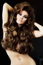 Raquel Welch stunning photo pin up hair over chest 11x17 Mini Poster