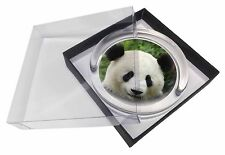 Face of a Giant Panda Bear Glass Paperweight in Gift Box Christmas Pres, ABP-3PW