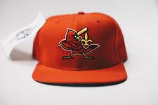 Johnson City Cardinals MiLB New Era New Vintage Wool Snapback NWT