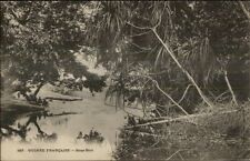 French Guinea - Guinee Francaise Sous Bois - Africa c1900 Postcard